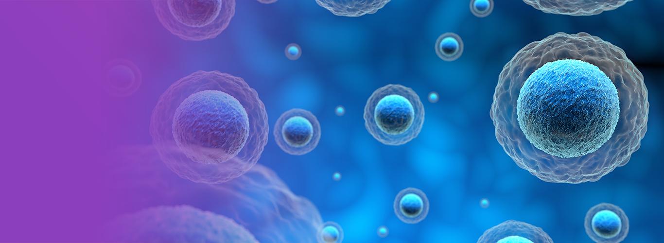 Bağışıklık Sistemini Nasıl Güçlendirebilirim?